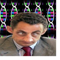 Sarko génétik